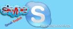 Репетиторы по skype